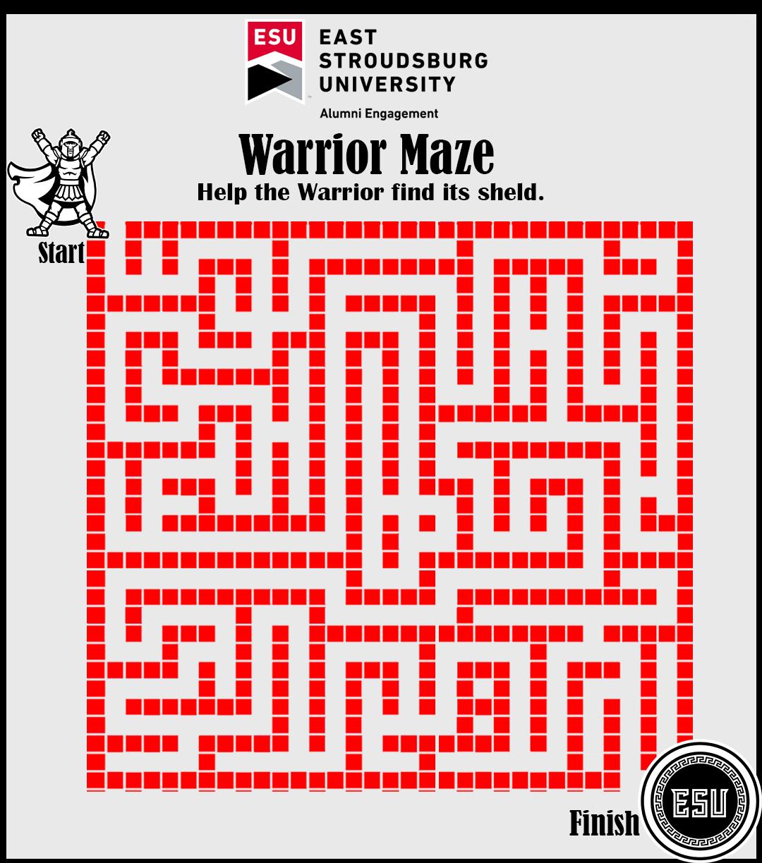 Warrior Maze 1